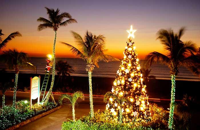 Christmas Holiday Tree Lighting Ceremony