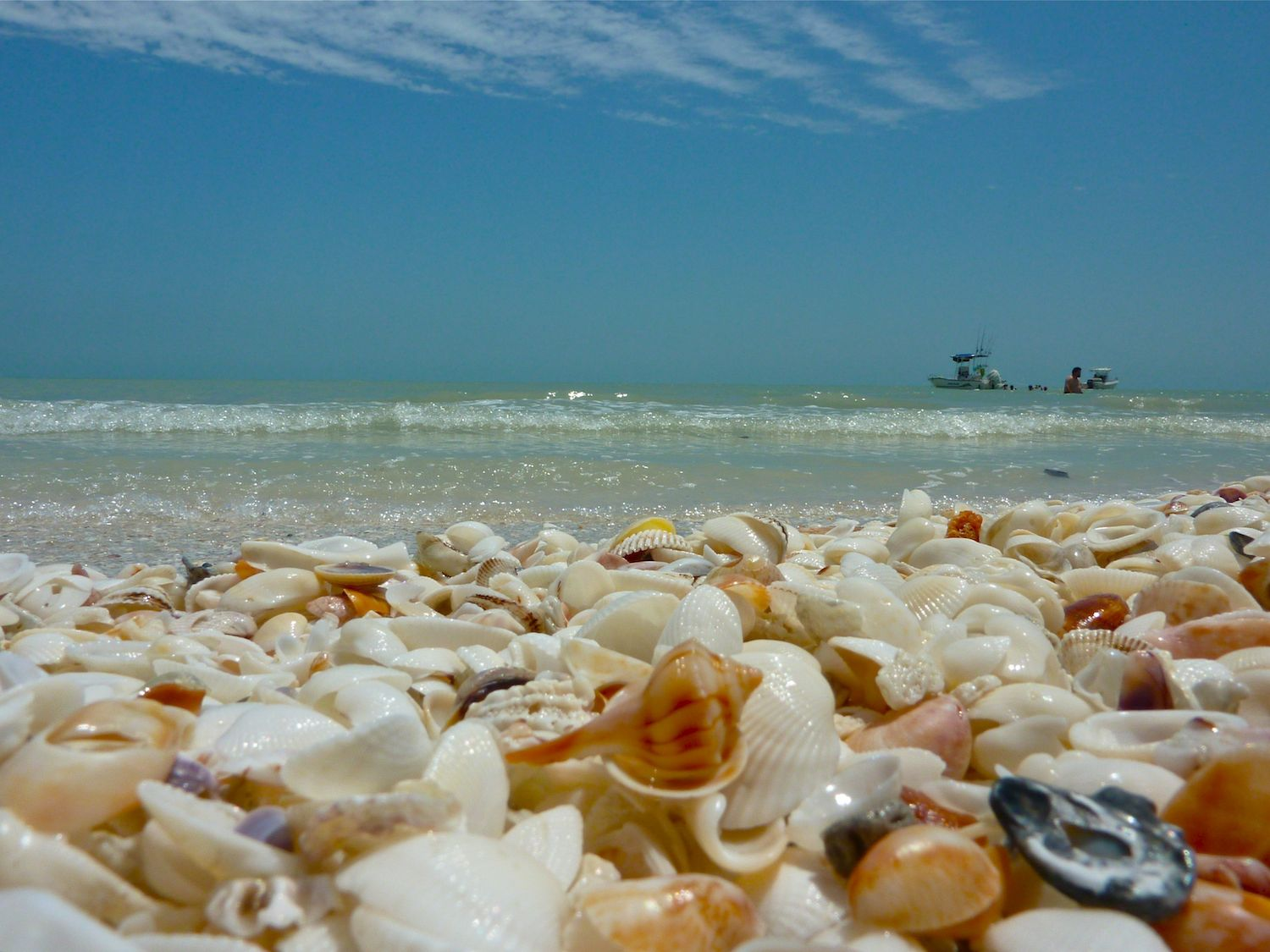 Stroll Along Relaxed Shelling On Captiva Island