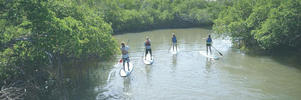 Captiva Island SUP Rentals at Tween Waters