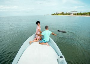 Captiva Island Dolphin Cruises